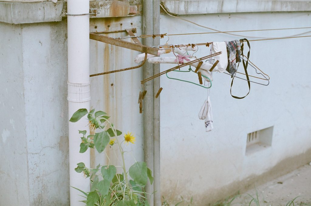 hangers and sunflower